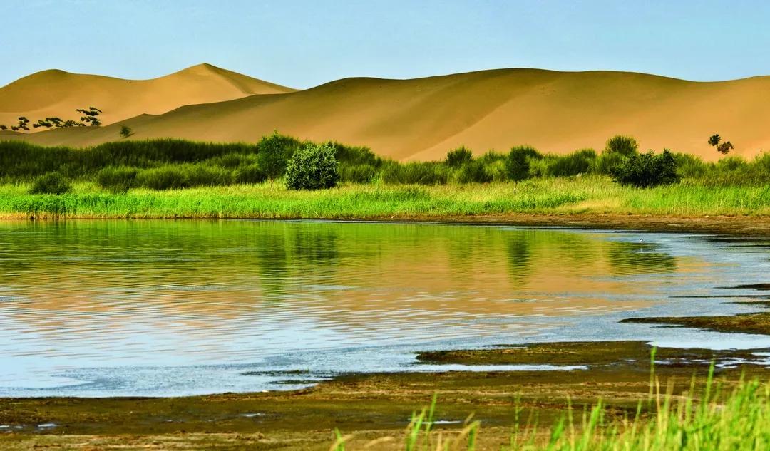 亿利库布其沙漠公园7.webp