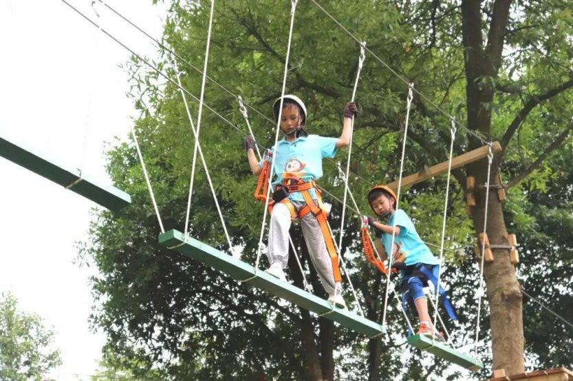 森林探险家夏令营 (5)