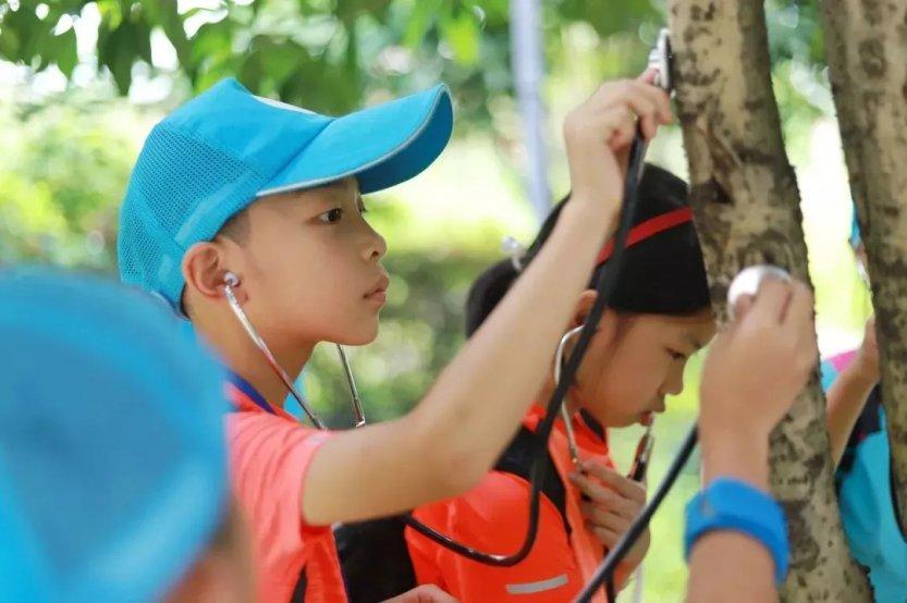 森林探险家-听树